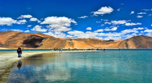 Pangong is situated at a high altitude of 14,256 feet above sea level and this stretch of water is 5 kilometers wide and 134 kilometers long which extends from eastern Ladakh to Tibet.
